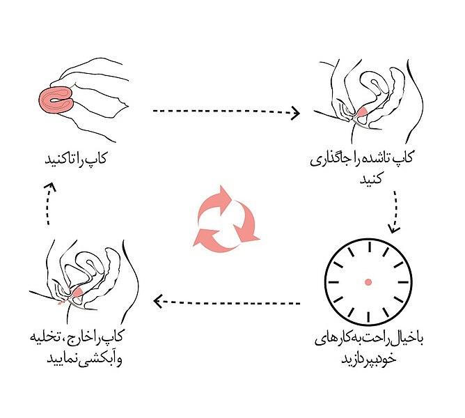 طریقه استفاده از کاپ قاعدگی - مراحل استفاده از کاپ قاعدگی با تصویر و فیلم - آنلاین کاندوم